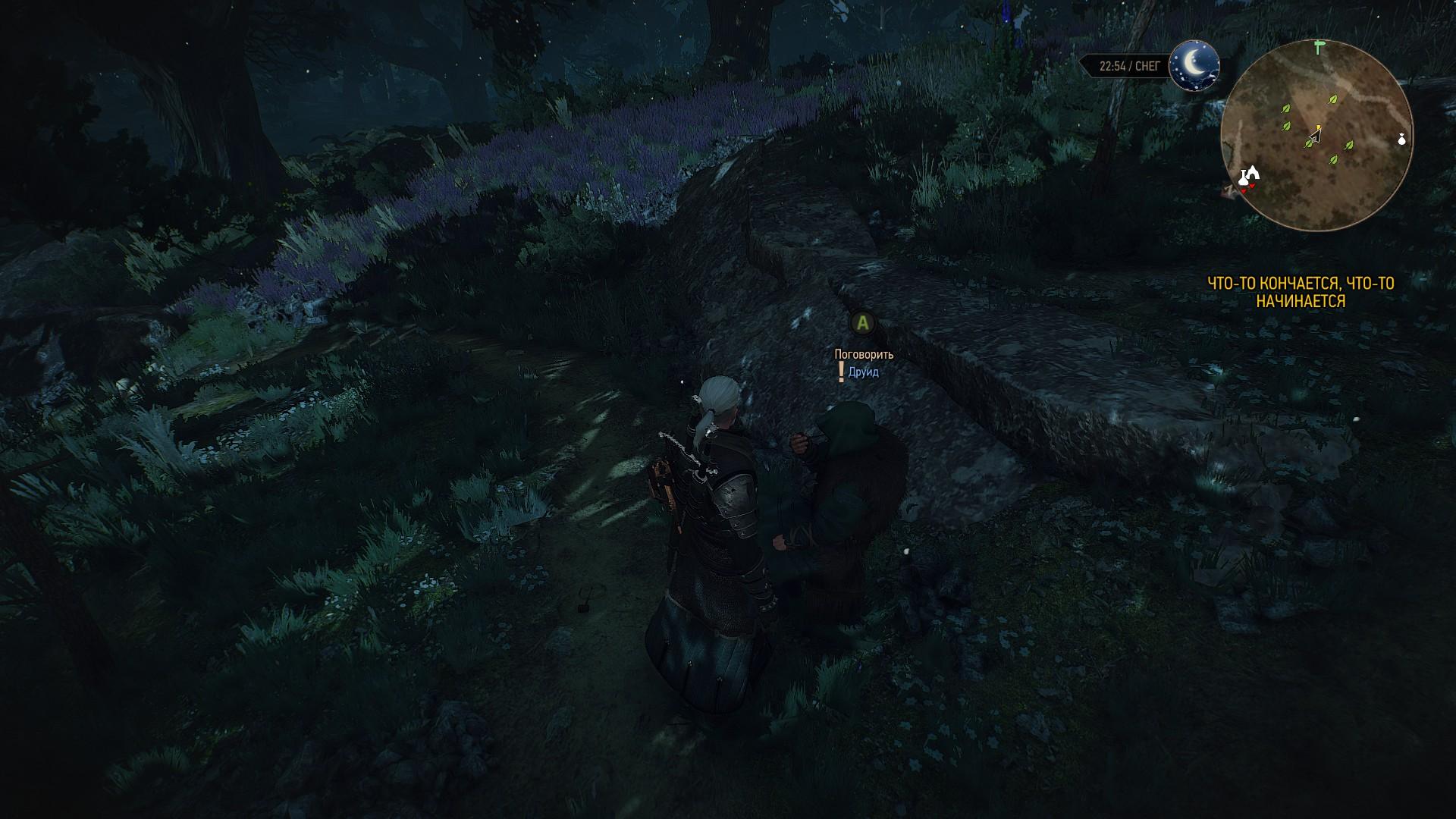 ведьмак 3 друид с восклицательным знаком