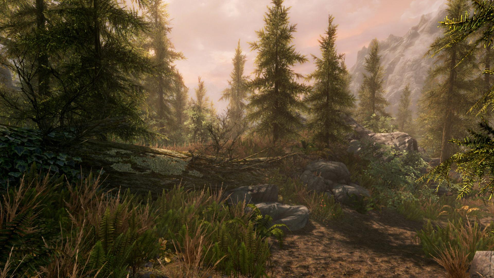 The Elder Scrolls V: Skyrim - Special Edition [v 1.2.39.0.8] (2016) PC | RePack от R.G. Механики - Скриншот 3