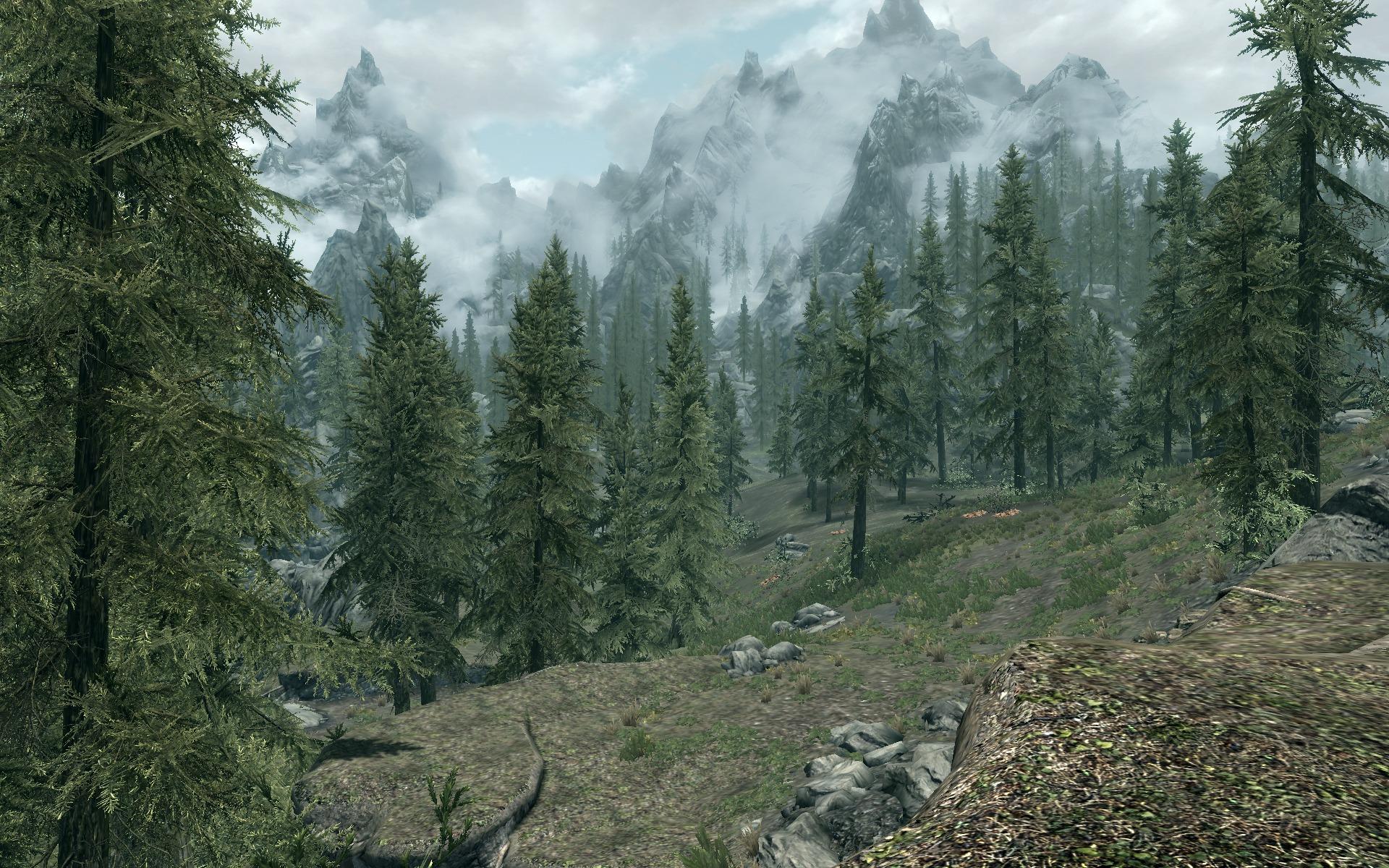 16065_2jLSqDAXuc_skyrim_tourist_forest.j