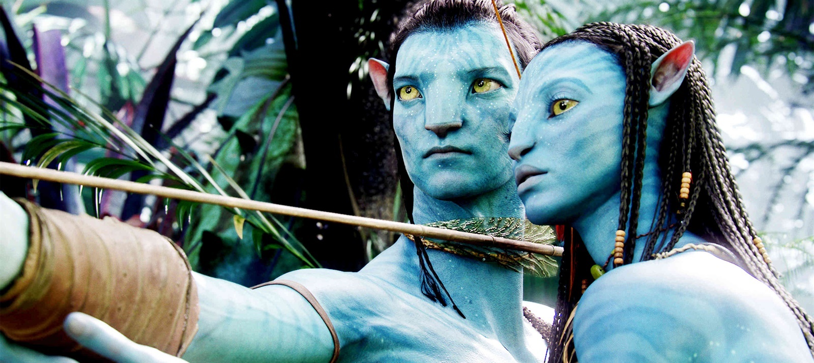 the importance of the plot visual effects sound and character in avatar a movie by james cameron Avatar 2 (2020) is a movie genre action produced by river road entertainment was james cameron as writing / characters name: as visual effects / visual.