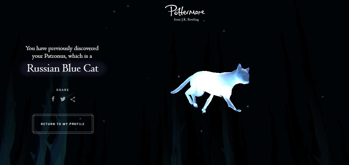 Патронус кота