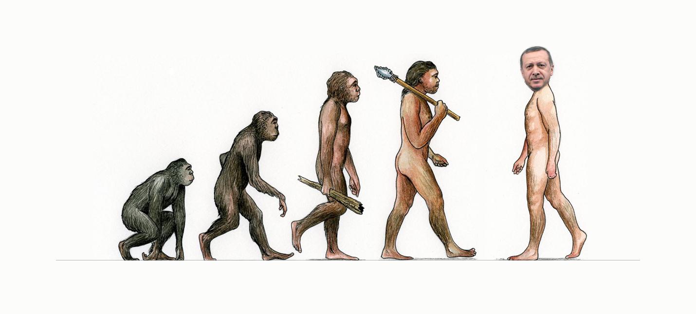 Эволюцию больше не будут учить в турецких школах