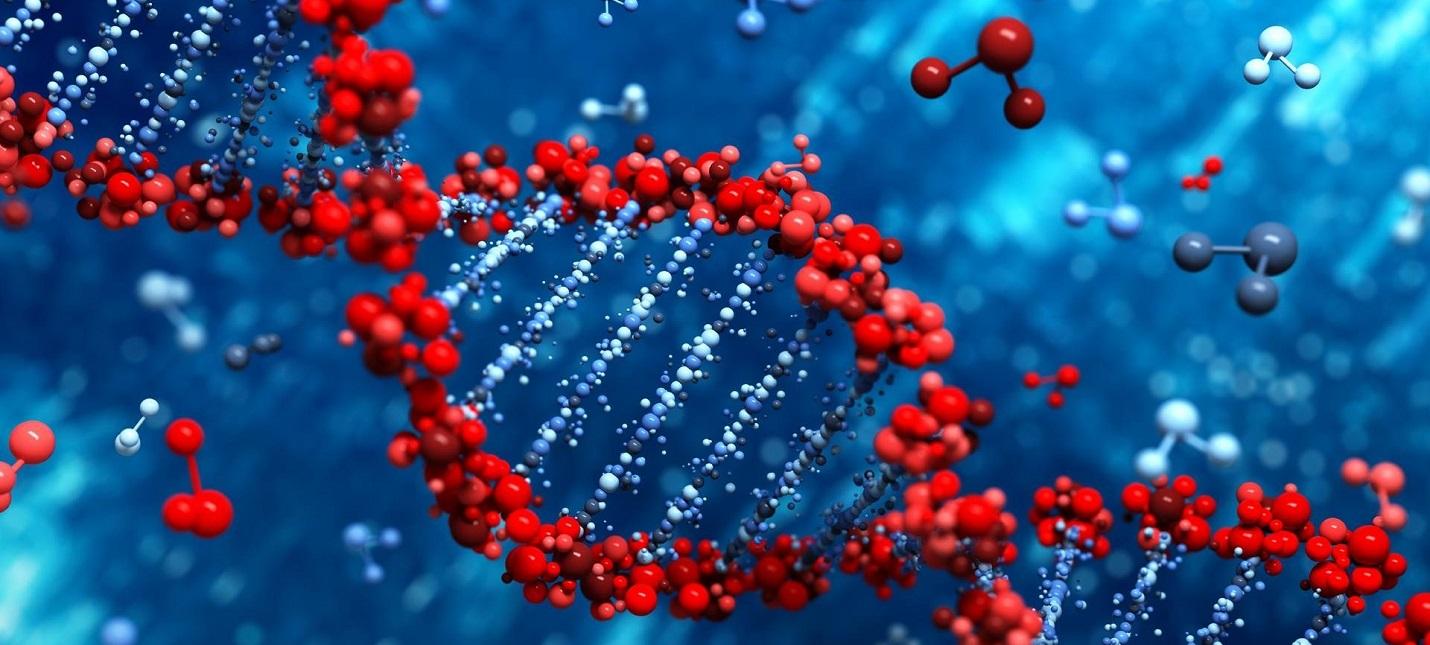 В Японии готовятся начать генную модификацию людей