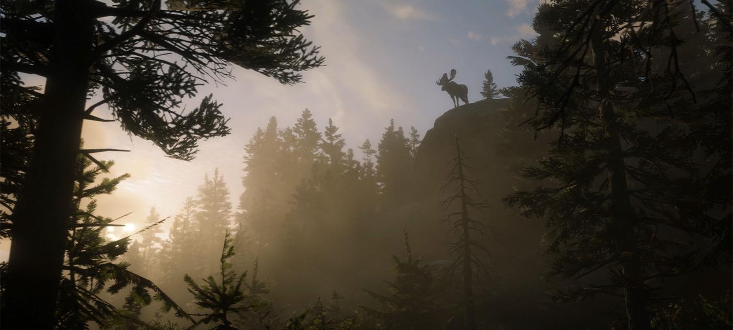 HDR в Red Dead Redemption 2 не служит реальной цели