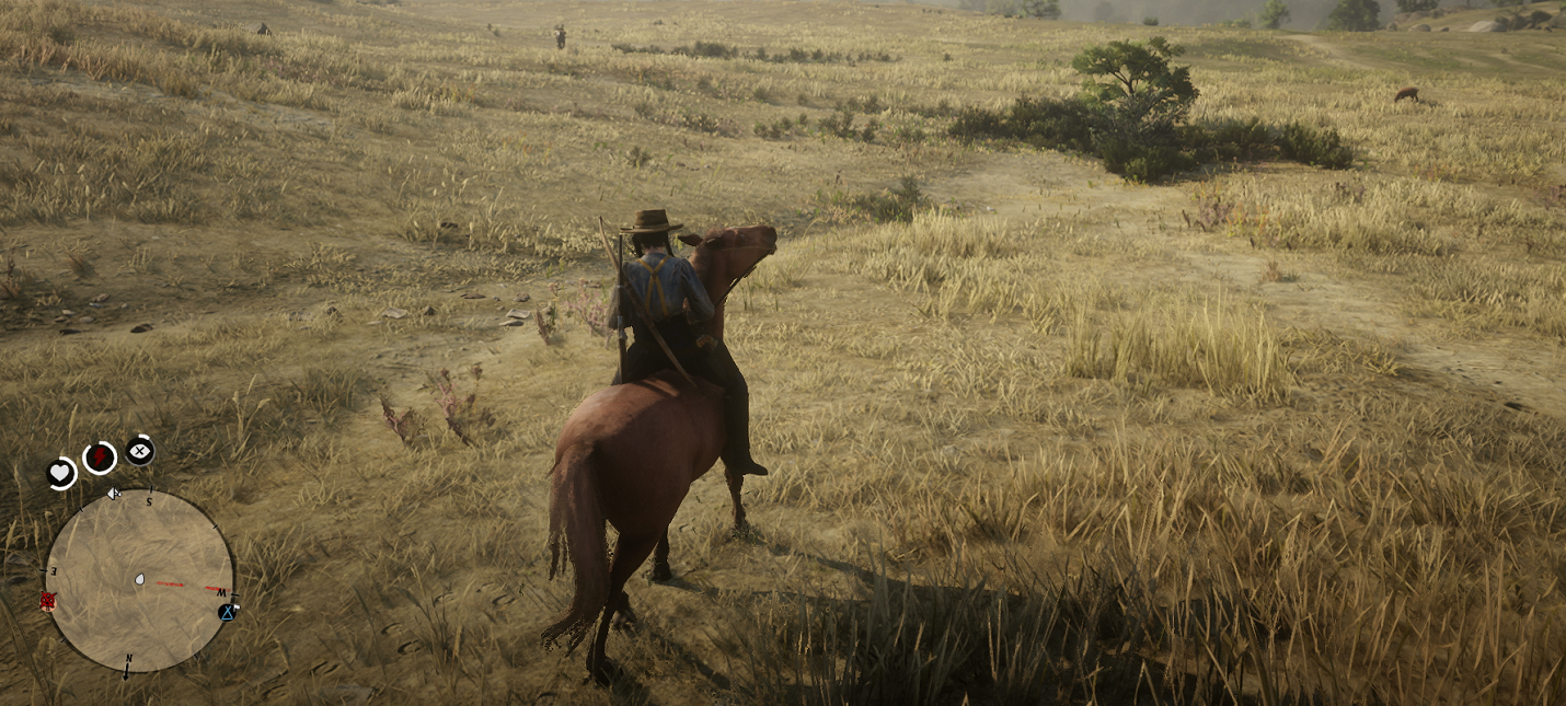 Гайд по лошадям в Red Dead Online (лучшие скакуны)