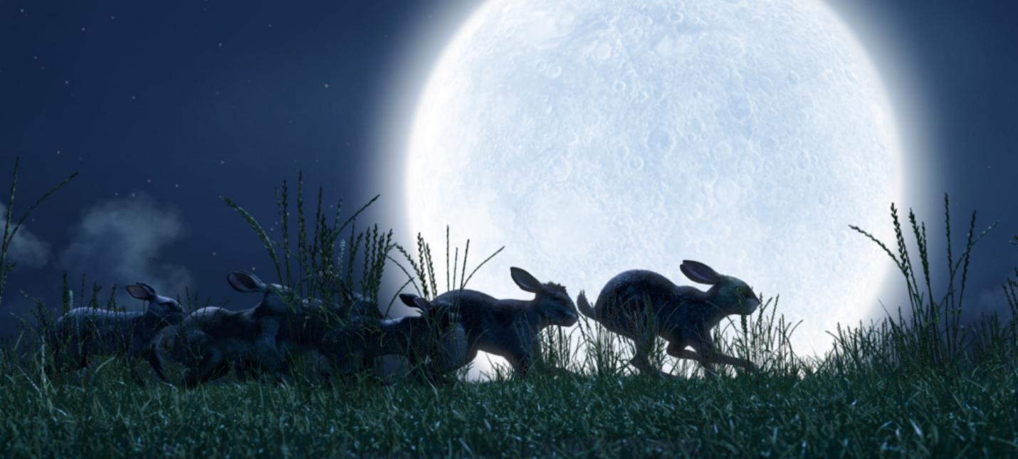 """Опасные приключения кроликов в новом трейлере сериала """"Обитатели холмов"""""""