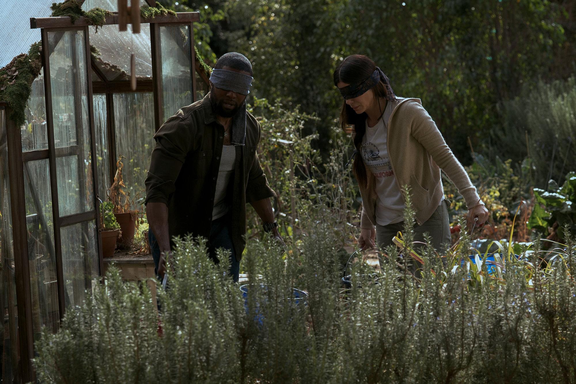 Ложная слепота: Рецензия на фильм Bird Box от Netflix