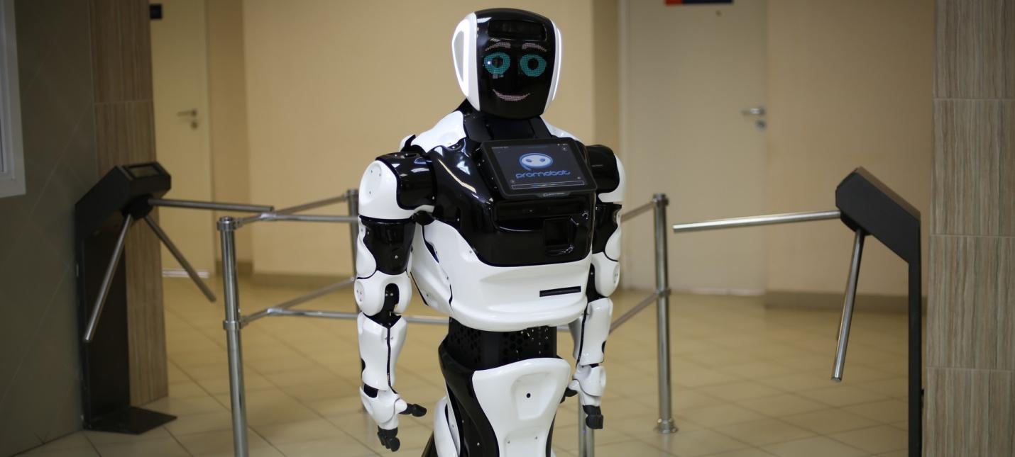 CES 2019: Беспилотная Tesla сбила автономного робота