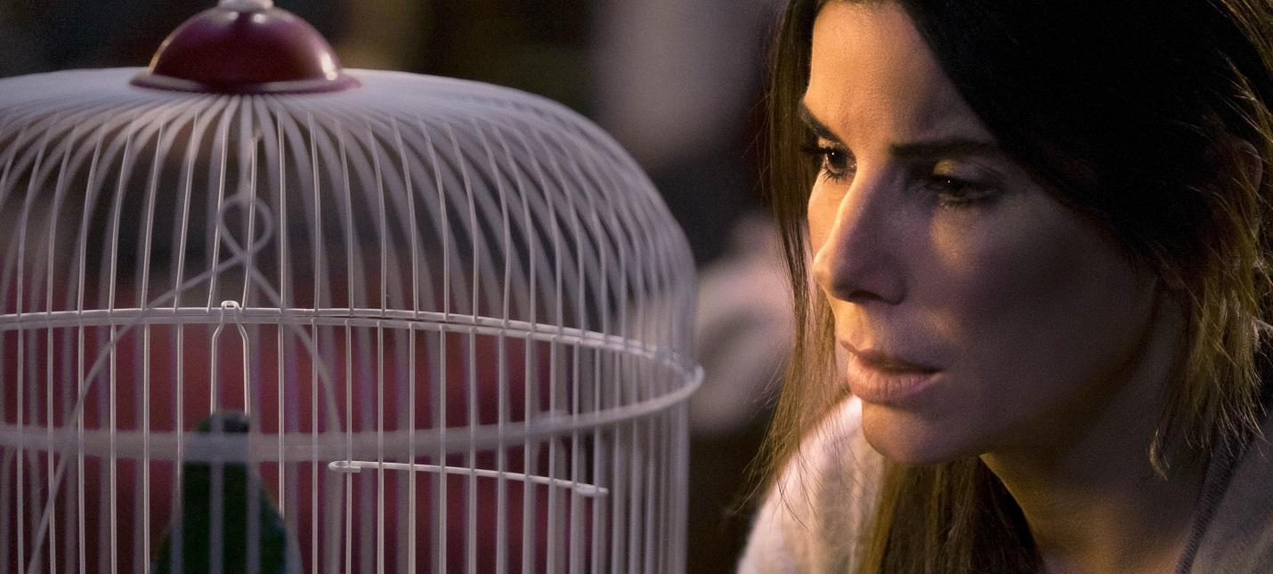 Netflix удалит из фильма Bird Box кадры реальной катастрофы