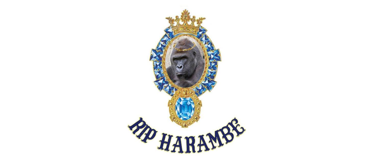 Илон Маск записал рэп про гориллу Харамби