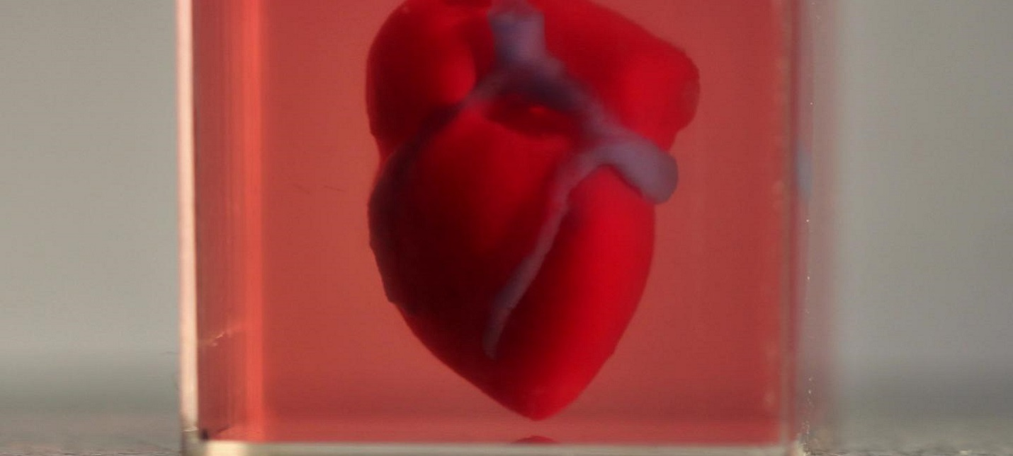 Ученые напечатали на 3D-принтере живое сердце