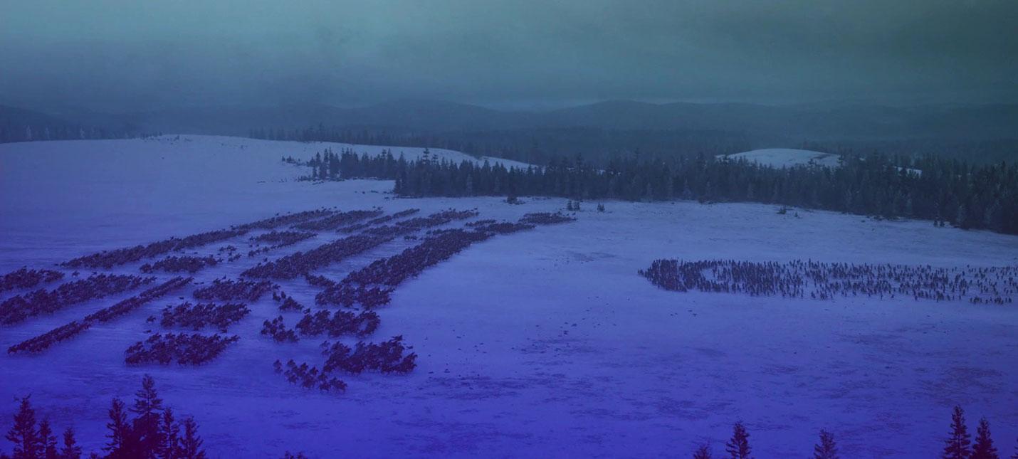 """Битву за Винтерфелл из """"Игры престолов"""" воссоздали в Total War и TABS"""