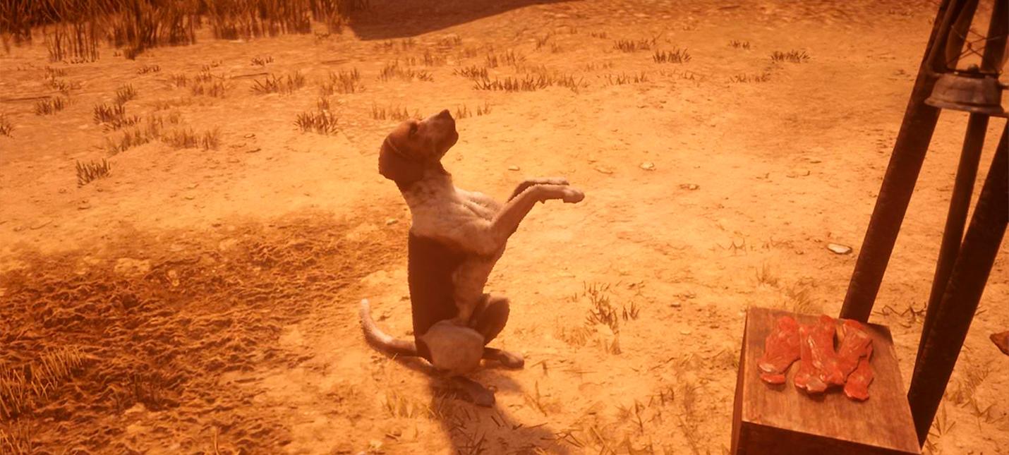 В Red Dead Online можно будет завести собаку, но не всем