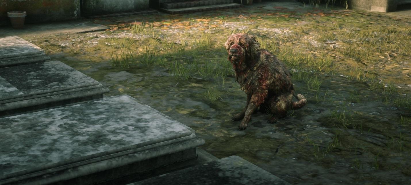 В Red Dead Online теперь можно гладить собак