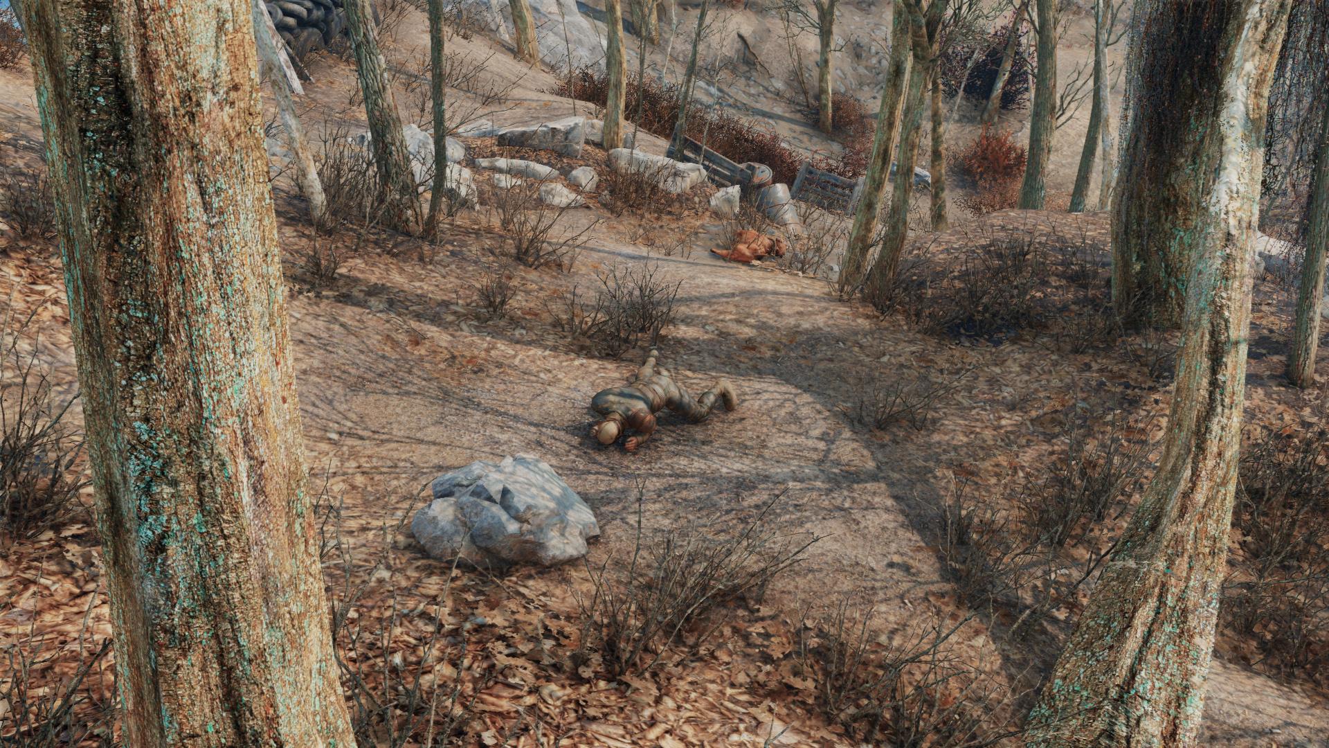 Fallout 4 получила новый набор 4K-текстур ландшафта