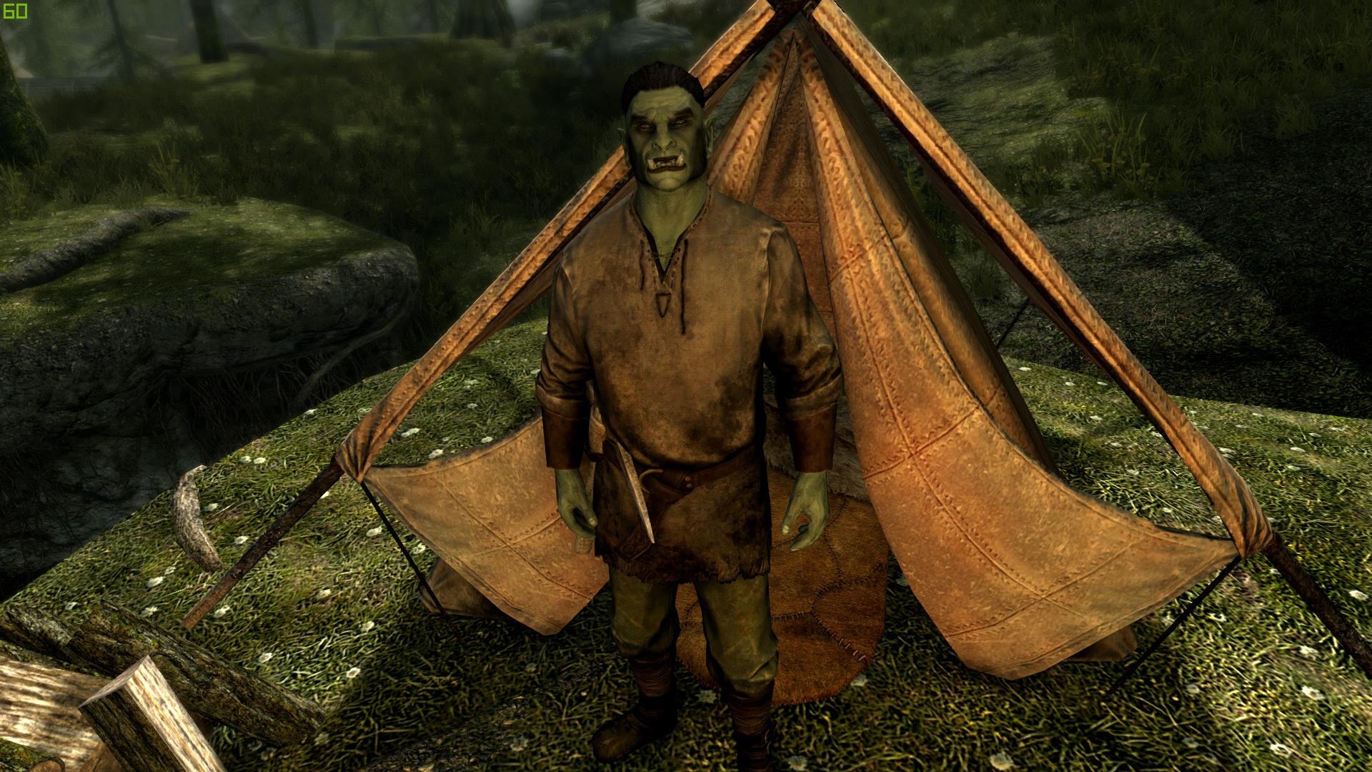 Для Skyrim создают мод возвращающий население в зачищенные от бандитов локации