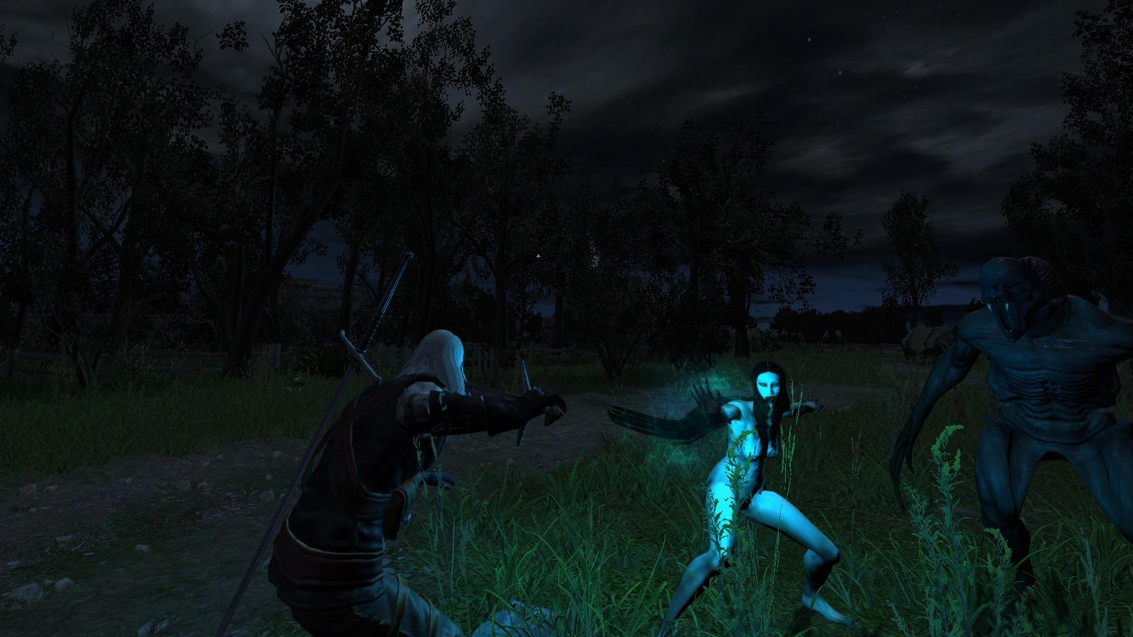 Для The Witcher доступен сюжетный мод с набором детективных миссий
