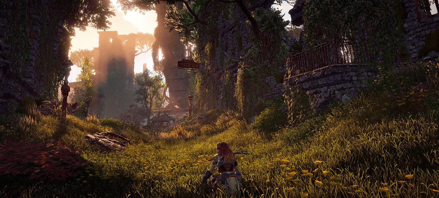 Проблемы Horizon Zero Dawn на PC  анимации в 30 fps и лаги на слабых сборках