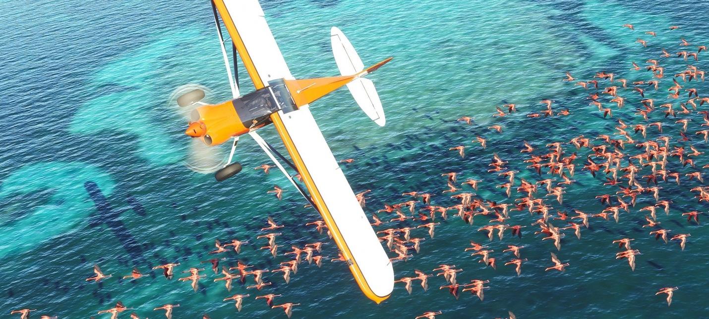 Разнообразие аэропортов и самолетов в новом трейлере Microsoft Flight Simulator