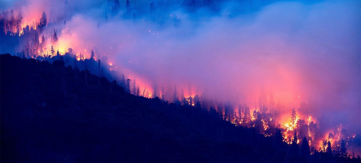 Апокалипсис в Америке  как лесные пожары превратили западное побережье в Fallout