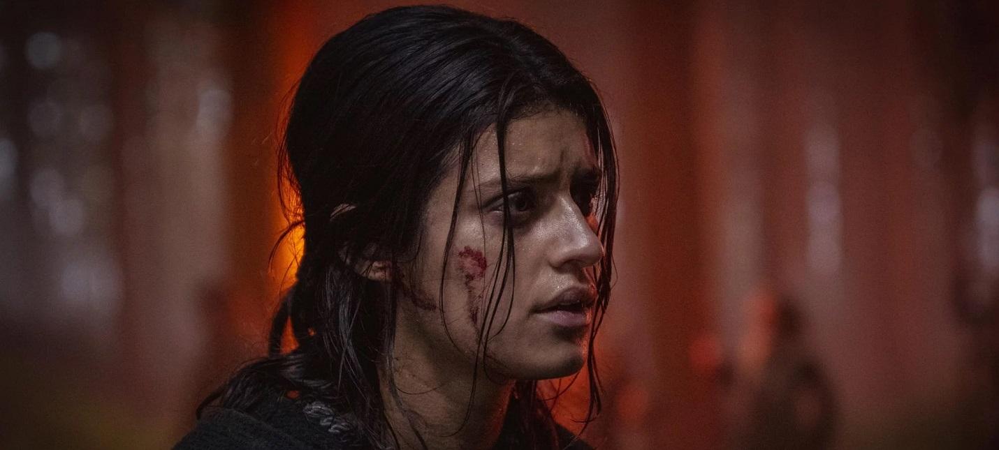 Слух Главными героями спин-оффа The Witcher Blood Origin станут две девушки