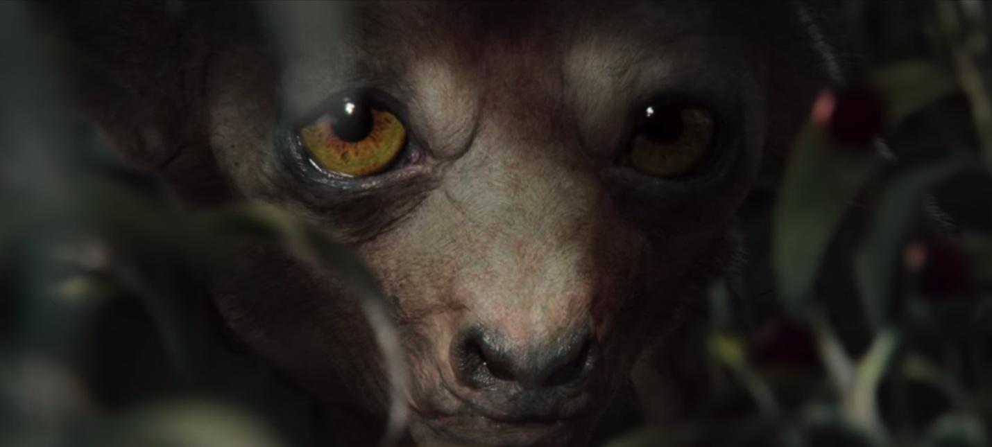 Вторая часть видео-бестиария Ведьмака от Netflix