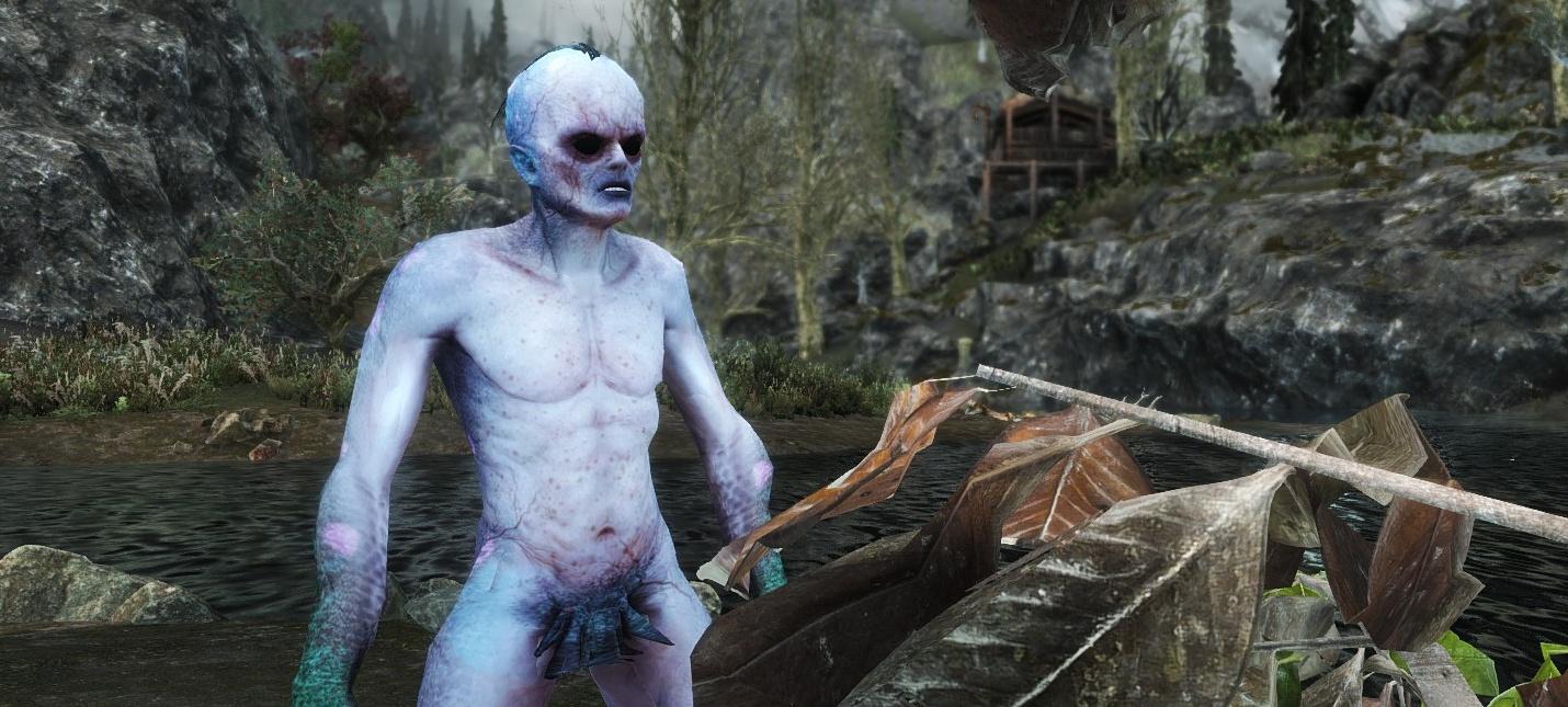 Мод A Witcher's Adventure добавляет в Skyrim ведьмачье оружие и навыки