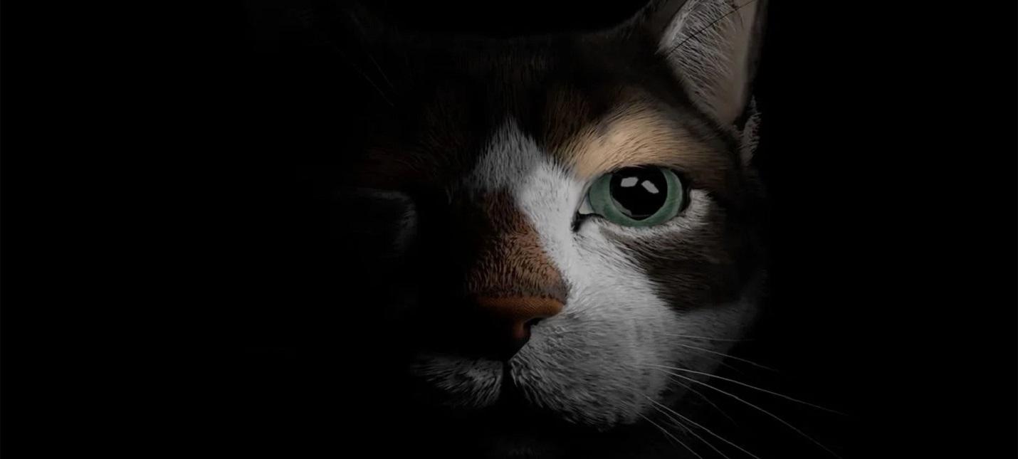 Темный лес и мягкие лапки в трейлере кошачьего хоррора Etched Memories