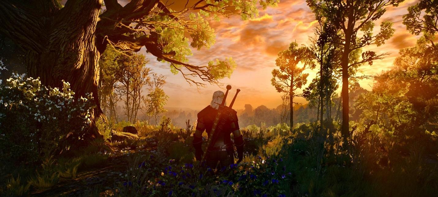Моддер значительно улучшил текстуры Белого Сада в The Witcher 3