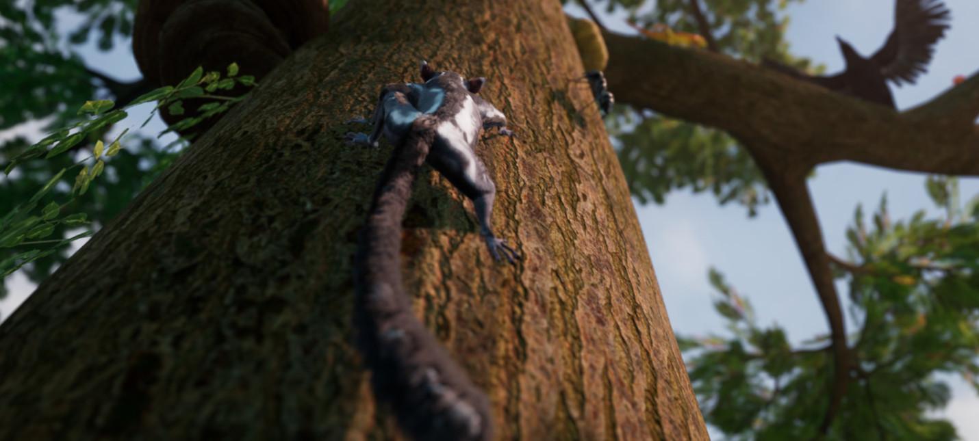 Адвенчура Away The Survival Series с белкой-летягой выйдет на Xbox One в этом году