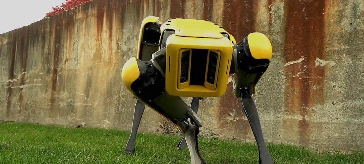 Инженер научил робопса Spot наливать пиво в стакан