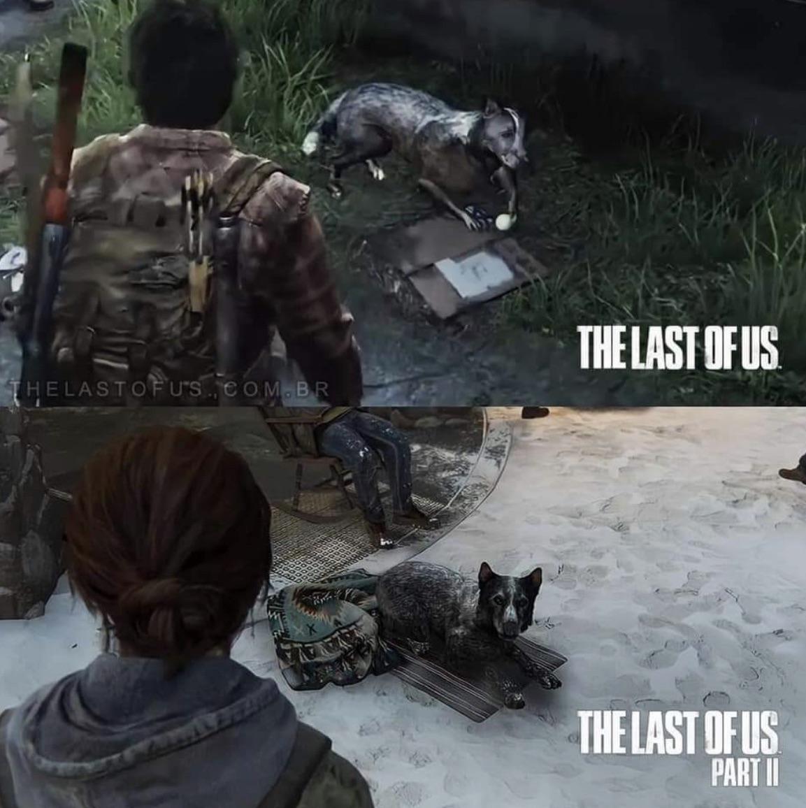 Игрок The Last of Us 2 заметил одного и того же песика в оригинальной игре и сиквеле