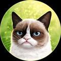 Infernalcat