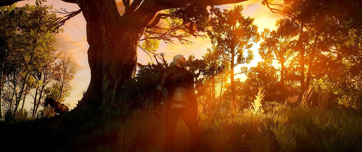 Гайд The Witcher 3: прокачка уровней