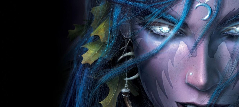 Blizzard обсудят новую RTS по Warcraft после завершения работы над Legacy of the Void