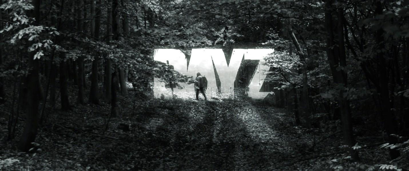Продажи DayZ превысили 800 тысяч менее чем за месяц