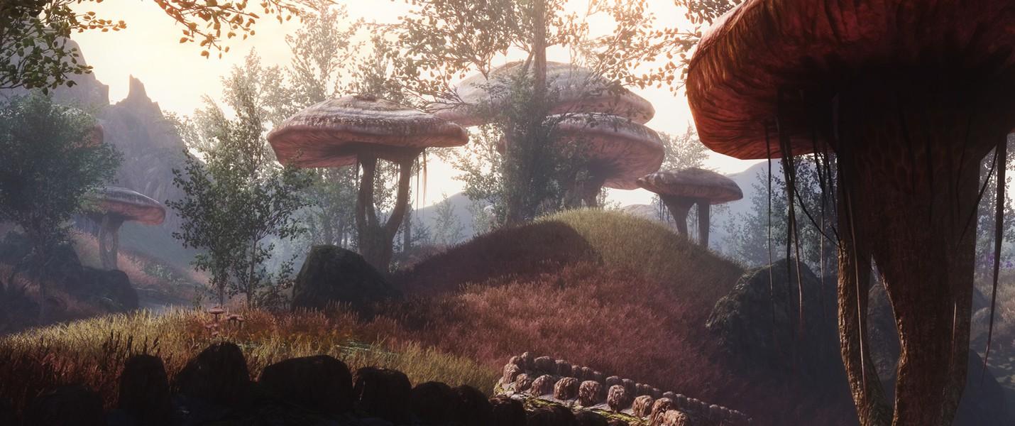 Bethesda: Skyrim для PS4 и Xbox One – это ошибка сайта