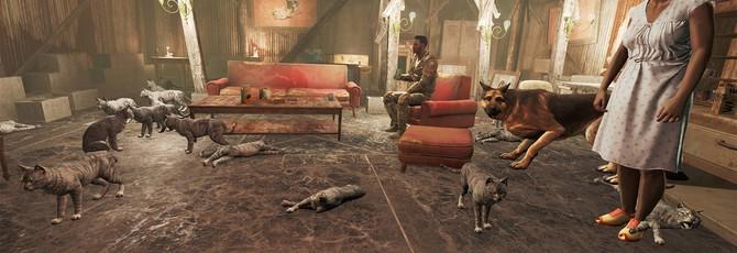 Shazoo отвечает на все ваши вопросы о Fallout 4
