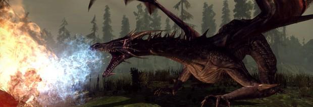 Дополнение Dragon Age: Awakening анонсировано