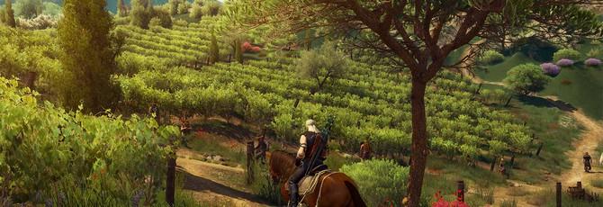 Гайд The Witcher 3: Кровь и Вино — как получить дом и улучшить его