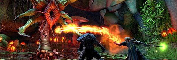 Что нам сможет предложить The Elder Scrolls Online?