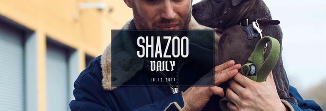 Shazoo Daily: Первый орден любит собак?