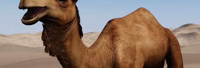 Разработчики Mount & Blade 2: Bannerlord рассказали о создании верблюдов
