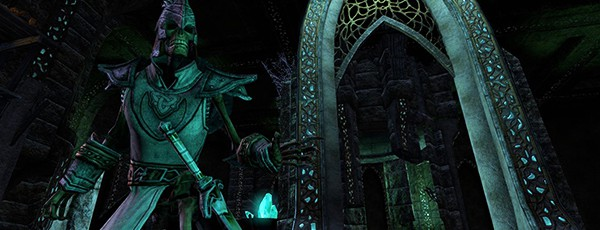 Еще до начала разработке TESO, Bethesda ожидали смешанную реакцию геймеров