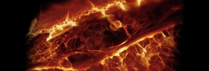 Ученые впервые записали 3D-видео живых клеток в организме