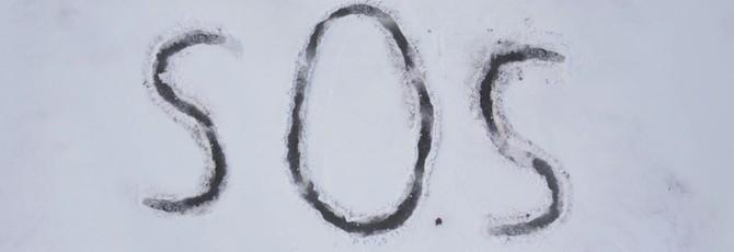 Мадс Миккельсен отправляет сигнал бедствия в трейлере фильма Arctic