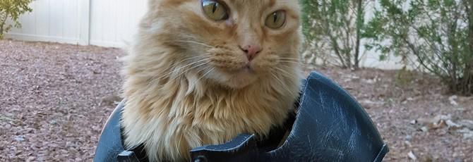 Геймер сделал силовую броню из Fallout для своей кошки