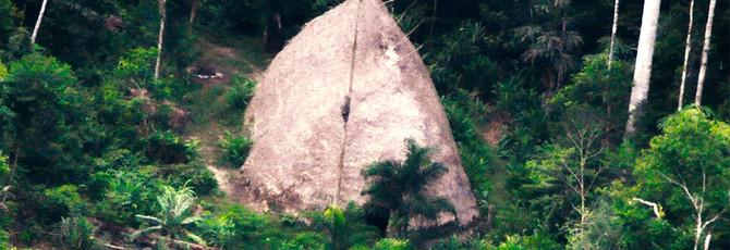Ранее невиданное племя в Амазонке засняли на летающий дрон