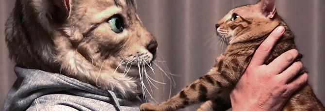 Японский сервис предлагает купить маску кота, основанную на реальном питомце