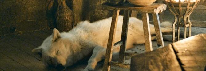 """Режиссер """"Игры престолов"""" объяснил, почему Джон Сноу не погладил Призрака"""